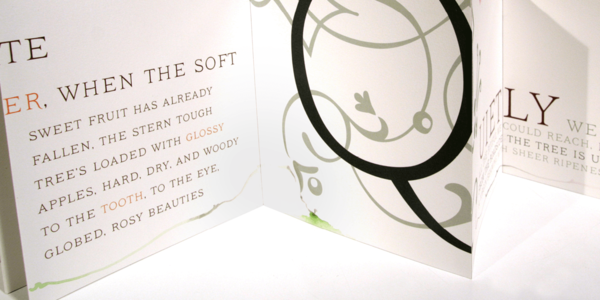 Small_ivory_-_a_decorative_serif_with_layering_options-02@2x