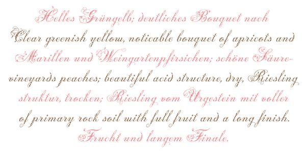 Small_weingut-script-by-georg-herold-wildfellner-16@2x