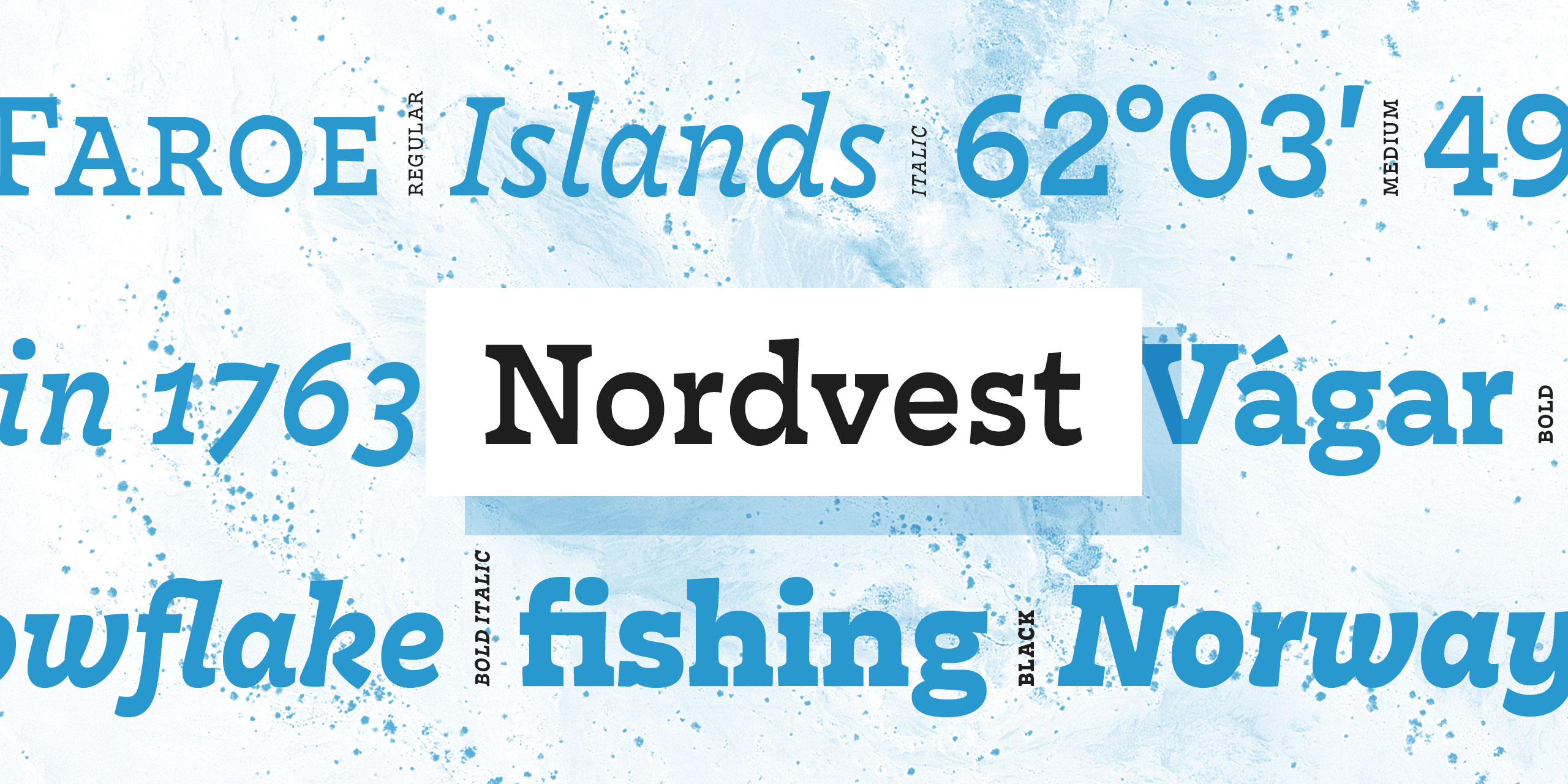 Showing for Nordvest by Alexandra Schwarzwald
