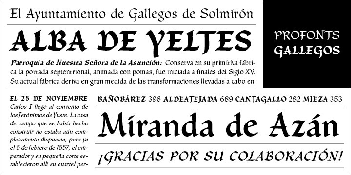 Gallegos Pro is a classical, pen-drawn upright and non-connecting script useful for many applications, e.g. book titles, ads, magazines or any kind of display work. Its calligraphic character shapes clearly remind of the ink stroke. There is no doubt about its German origin, and fine and elegant old fashion look is clearly intentional.