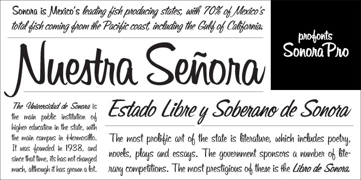 Sonora Pro is a profonts script typeface family which contains six styles as light, medium, bold and the corresponding italics. The character set covers about 1.400 glyphs for the complete Latin character set (West, East, Baltic, Turkish, Romanian), and a huge number of ligatures and alternates to make it a perfect OpenType Pro connecting script.   