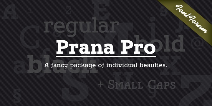 Prana Pro is a modern, young and fresh slab serif created by Christoph Ulherr during his studies with Prof. Gertrud Nolte at the faculty of design of the Hochschule Würzburg under the direction of Volker Schnebel, URW's type director. Prana Pro is an excellent headline and display font while, at the same time, very well readable at small sizes. It can be used for any kind of publication including posters and book covers.